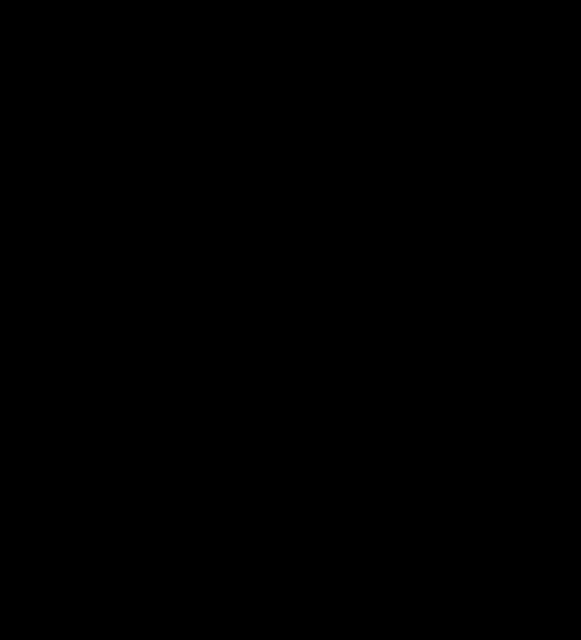 Illustration of men fighting, silhouette