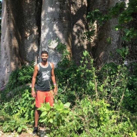 sahib's picture