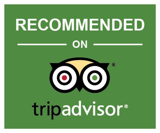 Poster for recommended on TripAdvisor green owl