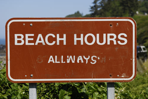 redwood hostel beach hours