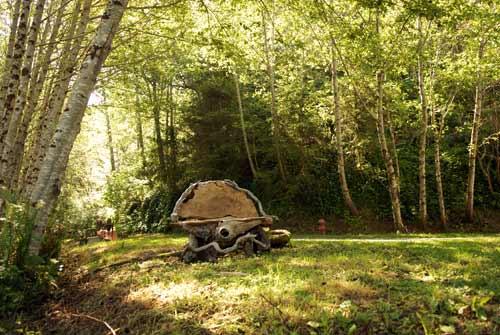 redwood hostels forest