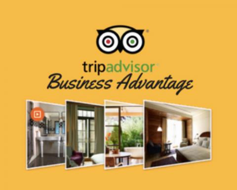 TripAdvisor's Business Advantage Poster, yellow, gallery