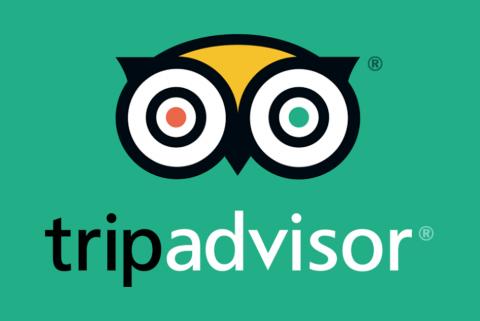 Poster Trip Advisor Green Owl