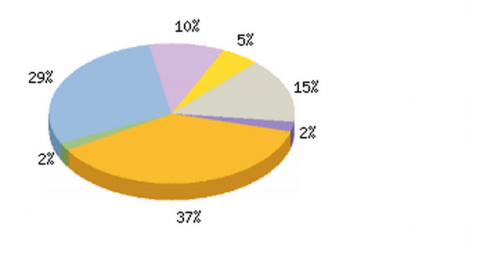 Pie Graph from New Hostels Survey